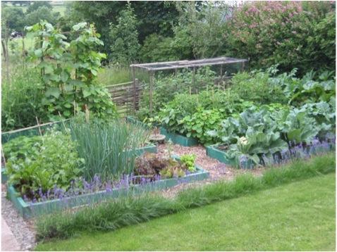Our Farm By Earth Flora Inc.