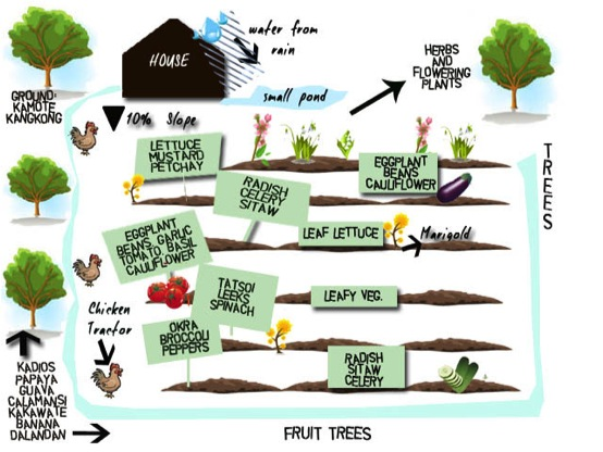 Planning Your Garden Our Farm By Earth Flora Inc