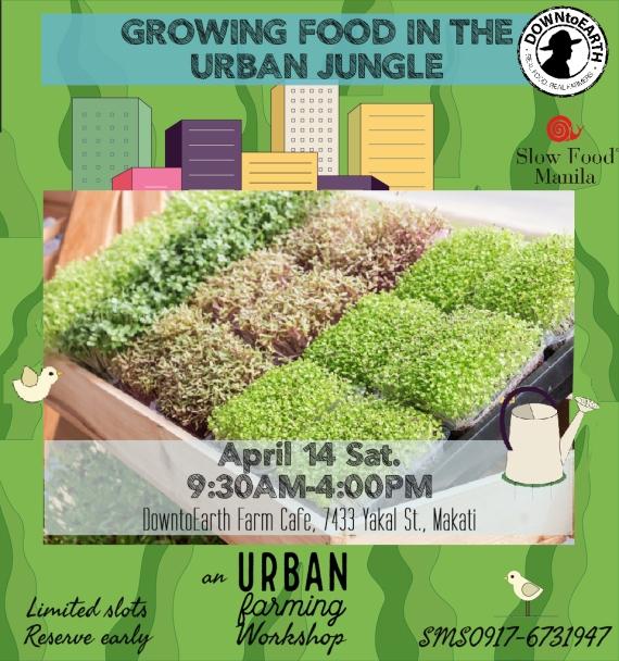 UrbanGarden3